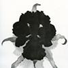 drawings/prints