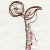 Pink Tendril
