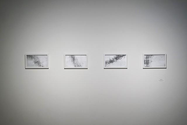 Black Forest installation view