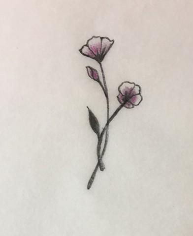 Tiny Flowers (sketch)