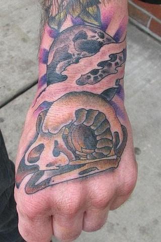 Chris Bost's Owl Skull