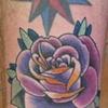 Taylor's Rose