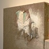 2011 Hoary Headed Series:  Paintings on linen, stretched on panel