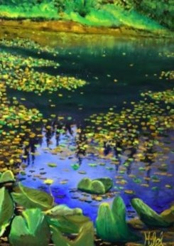 Lily Pads on Pond