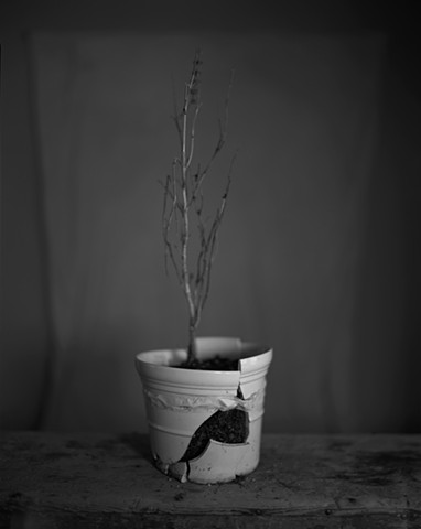 Untitled (The Broken Pot)