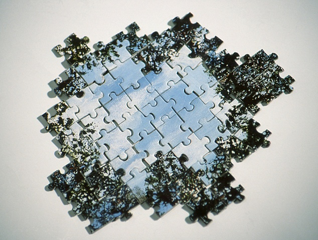 """""""Puzzled Reflection"""""""