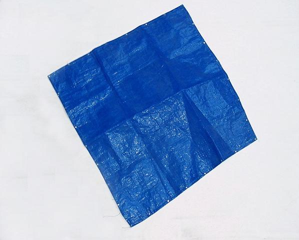 """Blue Tarp"""