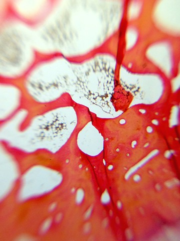 Abstract Micrography II