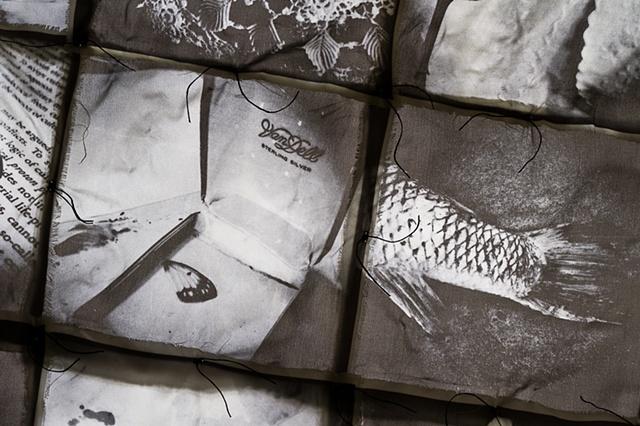 Ossa, detail (backlit)
