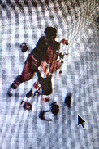 Hockey Fight in Canada (detail)