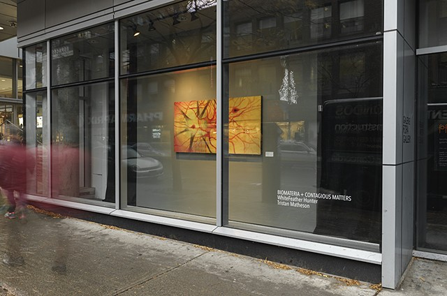 Biomateria + Contagious Matters, FOFA Gallery, Montreal