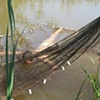 Float I (including Hair net: outdoor installation)