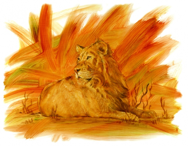 Sunset lion.