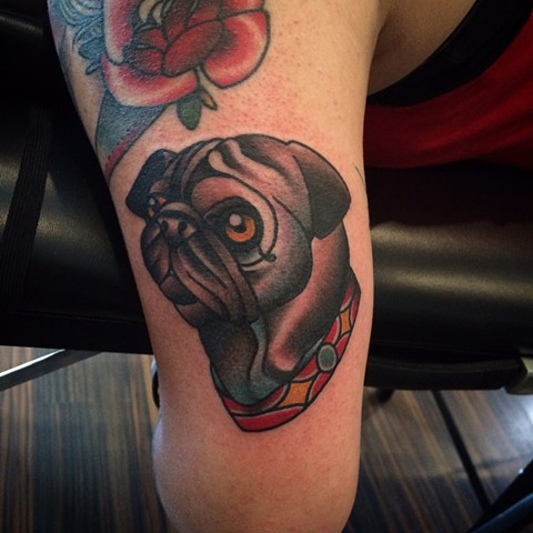 Traditional pug tattoo done at classic tattoos by Keller