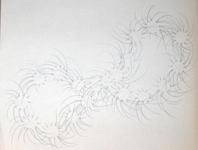 vortex flower 4