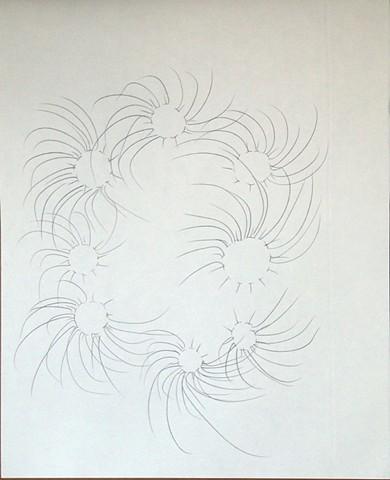vortex flower 2