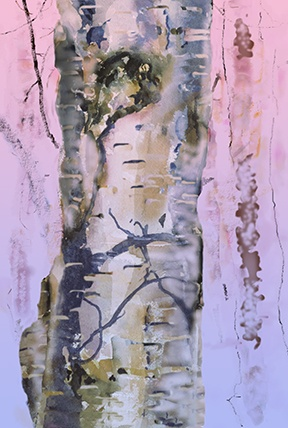 Arctic Birch #1