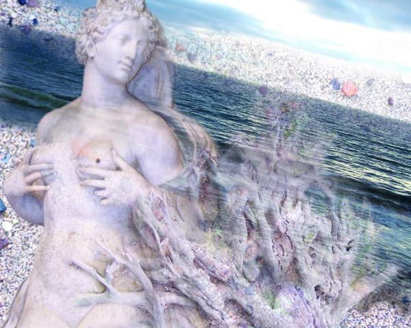 Venus and the sea