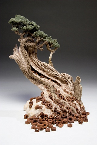 Bonsai Series