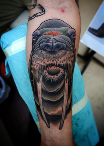 walrus tattoo by dave wah