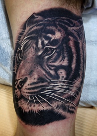 black and grey tiger tattoo by dave wah