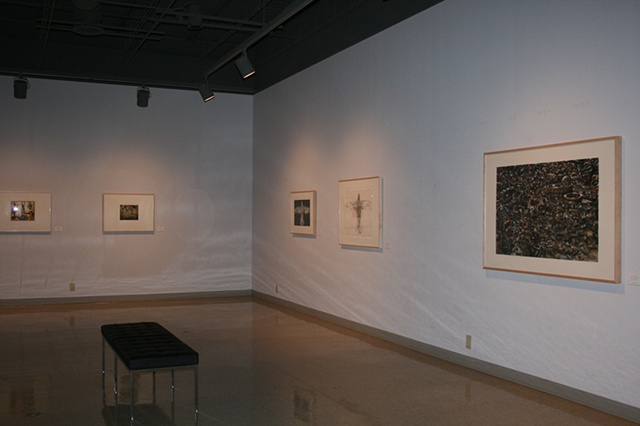 New Aquisitions Exhibition, Wichita Falls Museum of Art