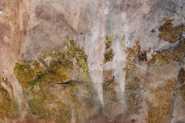 Sheet Moss (detail)