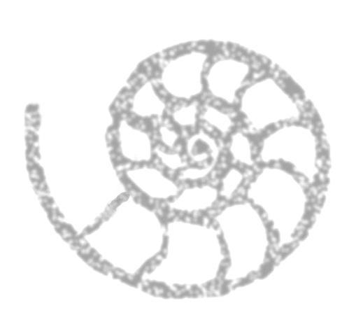 Samaya Devi Nautilis Logo
