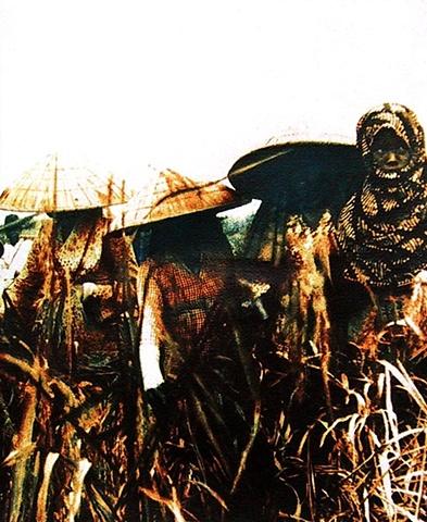 Fieldworkers, Sumatra 1947-1950