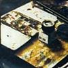 Gumbichromate prints & Cyanotype prints