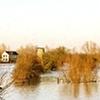 Rhine River #10