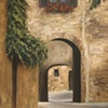 """Assisi Arches"""