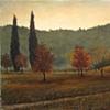 """""""Autumn Field"""""""
