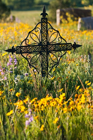 celtic cross cemetery elbert wildflowers colorado