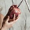 Dame de coeur