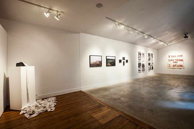Show installation view 2015