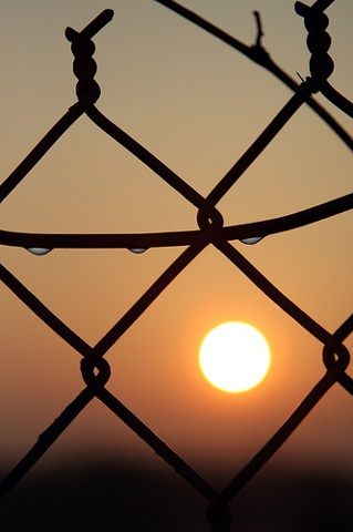 water droplets on fence at sunrise