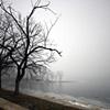maple lake, palos park, il