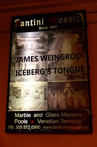 Iceberg's Tongue: Co-curated by James Weingrod
