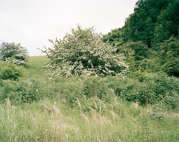 West from Camp Prison at Mittelbau-Dora (2009)