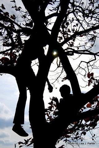 In the Tree - Farmville, VA 2007