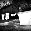 Wash on the Line