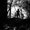 Walking Toward the Light - Massanutten, VA