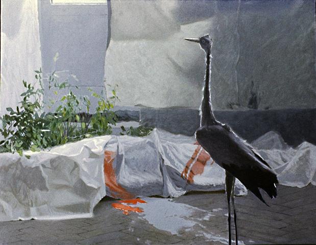 Bocian (Stork)