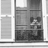 Paris Street Band