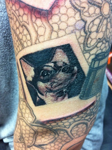 Tiny dog portrait in lace sleeve