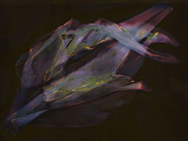 Earth Ruminations: Specimen III