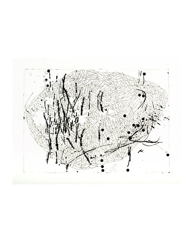 Imran Qureshi Reshape	 Etching, Dry Point