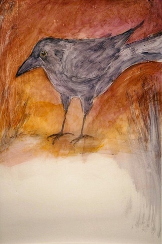 Rose Crow