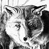 CMNH, Red Fox Exhibit